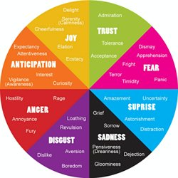 List of Emotions - Human Emotional Chart | Pearltrees